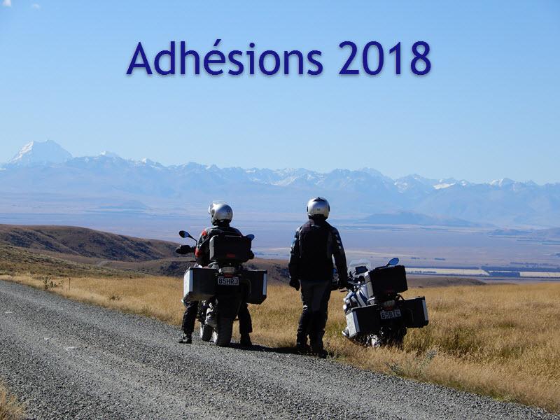 Adhesions 2018