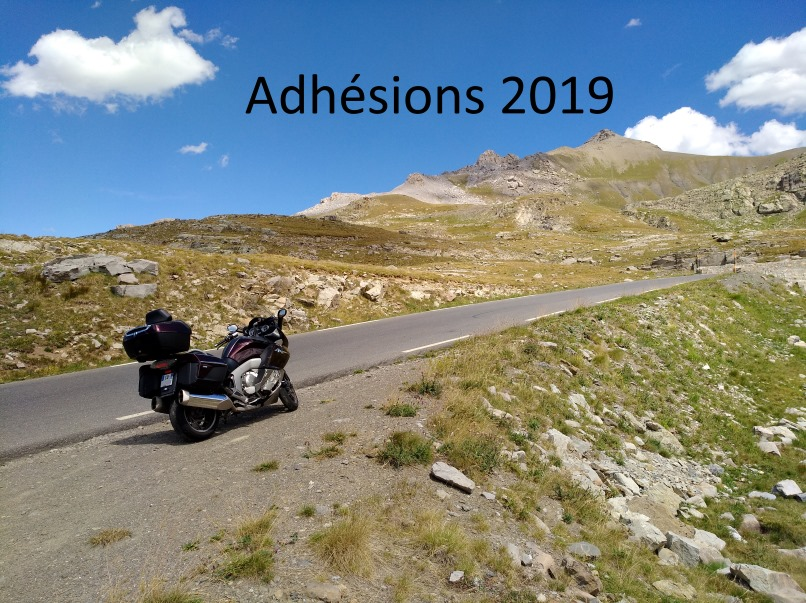 Adhesions2019